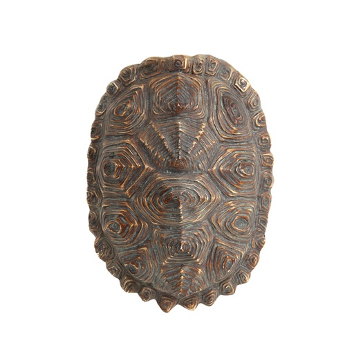 [AWD8002] Artificial turtle shell